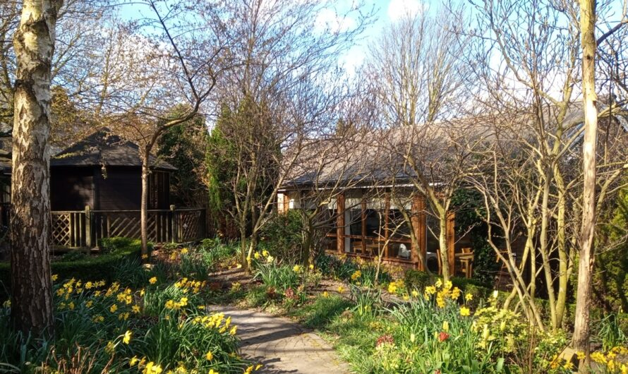 Whickham Hermitage Garden Re-Opens